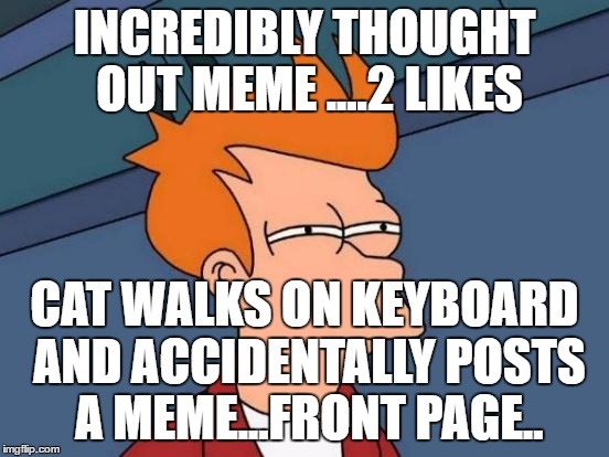 Futurama Fry Meme | INCREDIBLY THOUGHT OUT MEME ....2 LIKES CAT WALKS ON KEYBOARD AND ACCIDENTALLY POSTS A MEME...FRONT PAGE.. | image tagged in memes,futurama fry | made w/ Imgflip meme maker