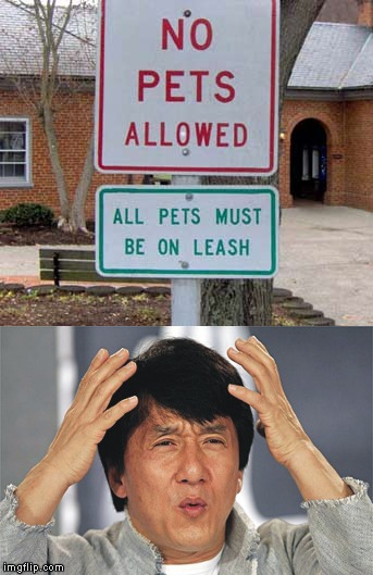 I feel you Jackie...I was thinking the EXACT same thing with the EXACT same face!!! | image tagged in funny signs,memes,no pets allowed,funny,signs | made w/ Imgflip meme maker