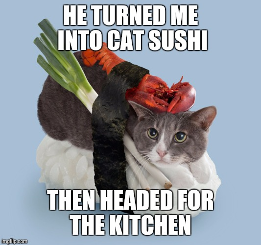 HE TURNED ME INTO CAT SUSHI THEN HEADED FOR THE KITCHEN | made w/ Imgflip meme maker
