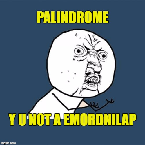 palindrome's suck | PALINDROME Y U NOT A EMORDNILAP | image tagged in memes,y u no,palindrome | made w/ Imgflip meme maker