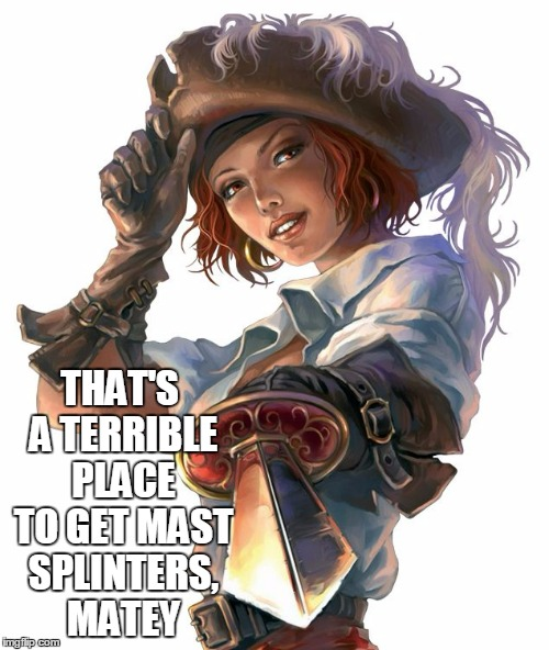 THAT'S A TERRIBLE PLACE TO GET MAST SPLINTERS, MATEY | made w/ Imgflip meme maker