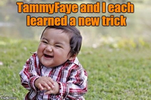 Evil Toddler Meme | TammyFaye and I each learned a new trick | image tagged in memes,evil toddler | made w/ Imgflip meme maker