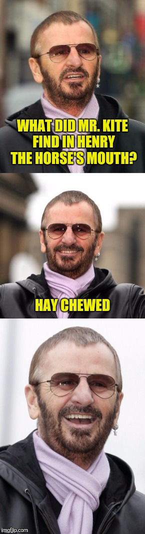 Bad pun Ringo | WHAT DID MR. KITE FIND IN HENRY THE HORSE'S MOUTH? HAY CHEWED | image tagged in being for the benefit of mr kite,hey jude | made w/ Imgflip meme maker