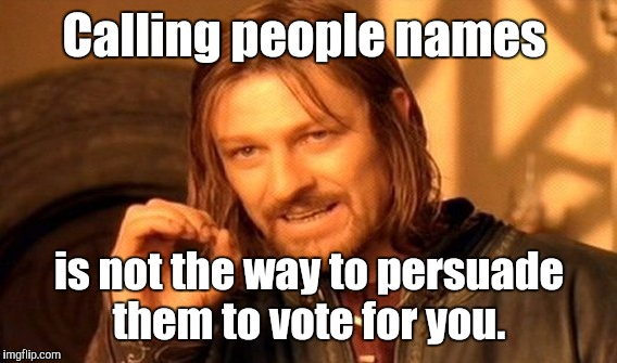 One Does Not Simply Meme | Calling people names is not the way to persuade them to vote for you. | image tagged in memes,one does not simply | made w/ Imgflip meme maker