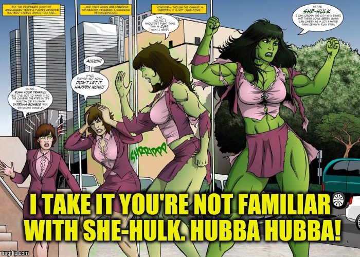 I TAKE IT YOU'RE NOT FAMILIAR WITH SHE-HULK. HUBBA HUBBA! | made w/ Imgflip meme maker