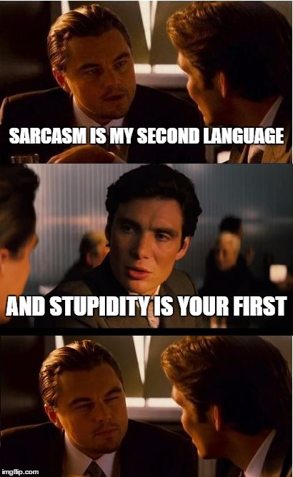 Inception Meme | SARCASM IS MY SECOND LANGUAGE AND STUPIDITY IS YOUR FIRST | image tagged in memes,inception | made w/ Imgflip meme maker