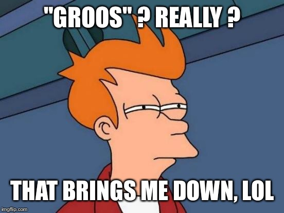 "Futurama Fry Meme | ""GROOS"" ? REALLY ? THAT BRINGS ME DOWN, LOL 