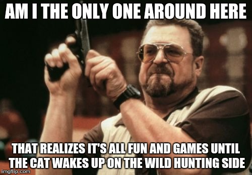 Am I The Only One Around Here Meme | AM I THE ONLY ONE AROUND HERE THAT REALIZES IT'S ALL FUN AND GAMES UNTIL THE CAT WAKES UP ON THE WILD HUNTING SIDE | image tagged in memes,am i the only one around here | made w/ Imgflip meme maker