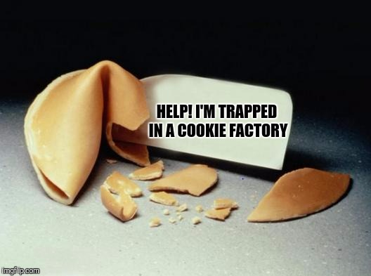 Unfortunate cookie | HELP! I'M TRAPPED IN A COOKIE FACTORY | image tagged in fortune cookie,sewmyeyesshut,unfortunate cookie,funny memes | made w/ Imgflip meme maker