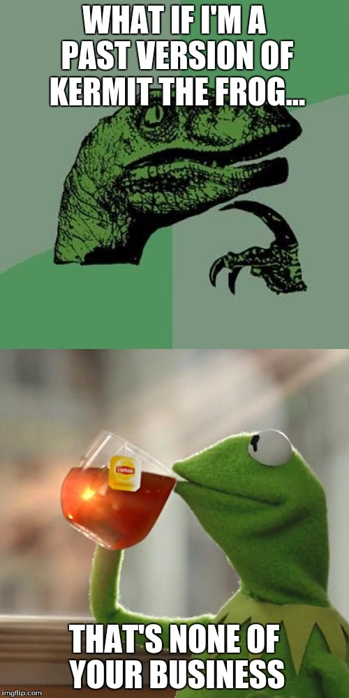 WHAT IF I'M A PAST VERSION OF KERMIT THE FROG... THAT'S NONE OF YOUR BUSINESS | made w/ Imgflip meme maker