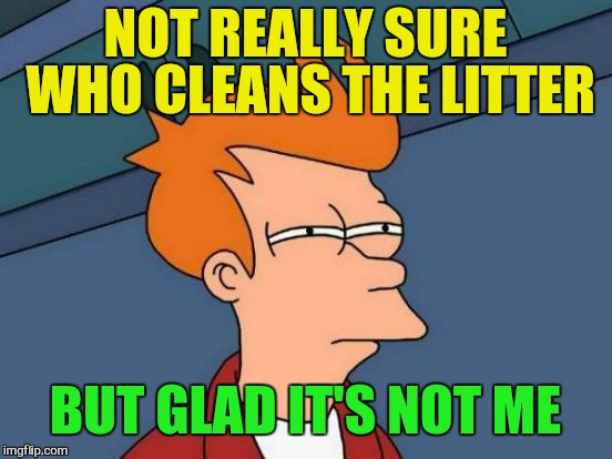 Futurama Fry Meme | NOT REALLY SURE WHO CLEANS THE LITTER BUT GLAD IT'S NOT ME | image tagged in memes,futurama fry | made w/ Imgflip meme maker