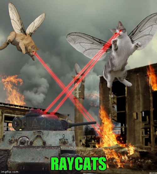 RAYCATS | made w/ Imgflip meme maker
