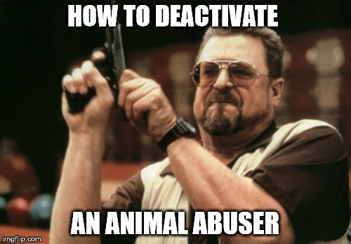Am I The Only One Around Here Meme | HOW TO DEACTIVATE AN ANIMAL ABUSER | image tagged in memes,am i the only one around here | made w/ Imgflip meme maker