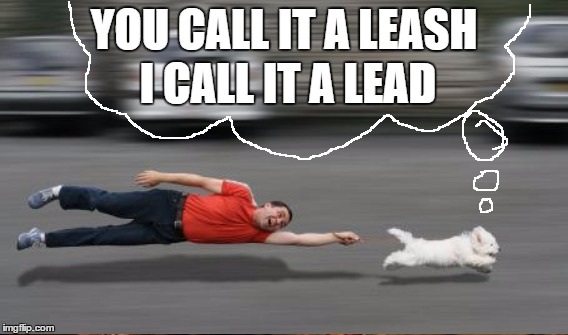 YOU CALL IT A LEASH I CALL IT A LEAD | made w/ Imgflip meme maker