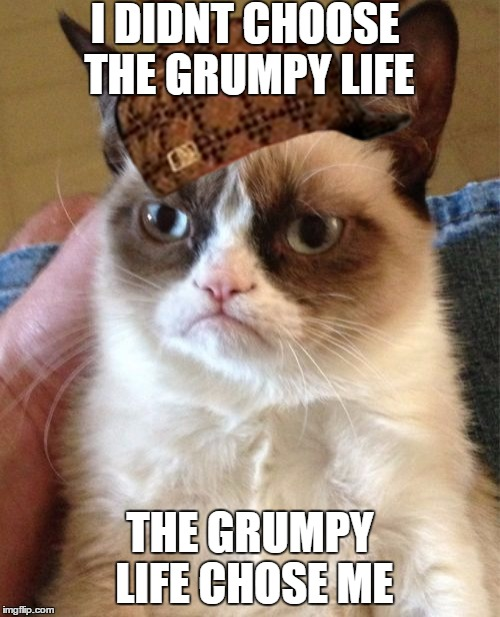 Grumpy Cat Meme | I DIDNT CHOOSE THE GRUMPY LIFE THE GRUMPY LIFE CHOSE ME | image tagged in memes,grumpy cat,scumbag | made w/ Imgflip meme maker
