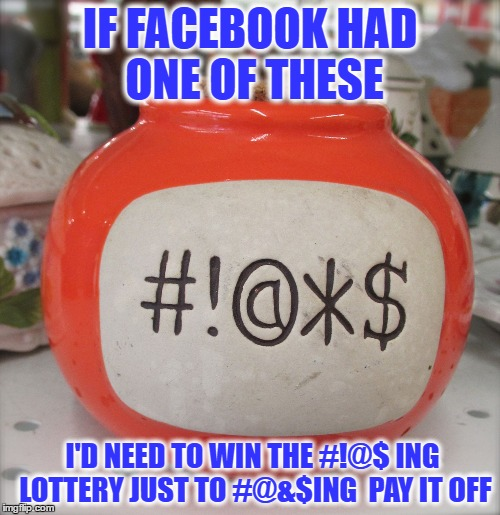 IF FACEBOOK HAD ONE OF THESE; I'D NEED TO WIN THE #!@$ ING LOTTERY JUST TO #@&$ING  PAY IT OFF | image tagged in swear jar 2 | made w/ Imgflip meme maker