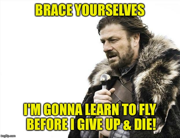 Brace Yourselves X is Coming Meme | BRACE YOURSELVES I'M GONNA LEARN TO FLY BEFORE I GIVE UP & DIE! | image tagged in memes,brace yourselves x is coming | made w/ Imgflip meme maker