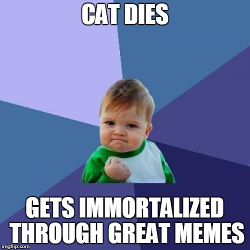 Success Kid Meme | CAT DIES GETS IMMORTALIZED THROUGH GREAT MEMES | image tagged in memes,success kid | made w/ Imgflip meme maker