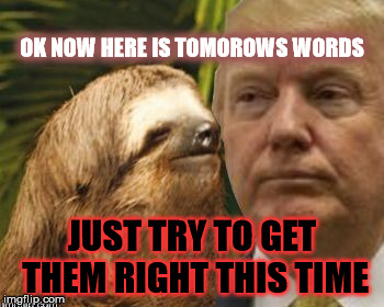 Trumps Advisor | OK NOW HERE IS TOMOROWS WORDS JUST TRY TO GET THEM RIGHT THIS TIME | image tagged in political advice sloth,trump,donald trump,bad advice sloth | made w/ Imgflip meme maker