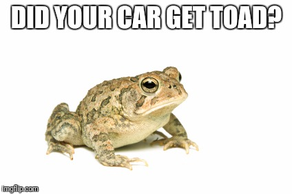 DID YOUR CAR GET TOAD? | made w/ Imgflip meme maker