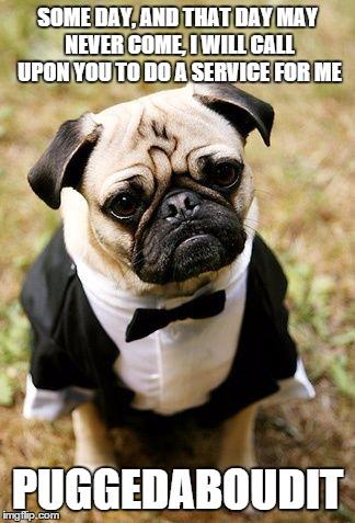 Pug Life Imgflip