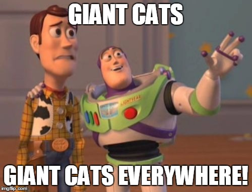 X, X Everywhere Meme | GIANT CATS GIANT CATS EVERYWHERE! | image tagged in memes,x,x everywhere,x x everywhere | made w/ Imgflip meme maker