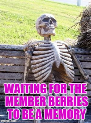 Waiting Skeleton Meme | WAITING FOR THE MEMBER BERRIES TO BE A MEMORY | image tagged in memes,waiting skeleton | made w/ Imgflip meme maker