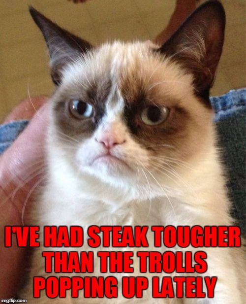 Grumpy Cat Meme | I'VE HAD STEAK TOUGHER THAN THE TROLLS POPPING UP LATELY | image tagged in memes,grumpy cat | made w/ Imgflip meme maker