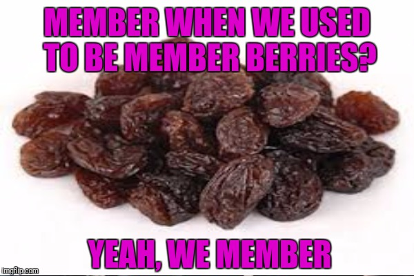MEMBER WHEN WE USED TO BE MEMBER BERRIES? YEAH, WE MEMBER | made w/ Imgflip meme maker