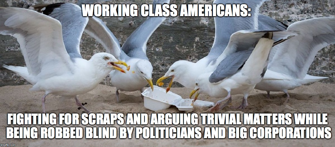 Fighting for scraps | WORKING CLASS AMERICANS: FIGHTING FOR SCRAPS AND ARGUING TRIVIAL MATTERS WHILE BEING ROBBED BLIND BY POLITICIANS AND BIG CORPORATIONS | image tagged in working class,americans,american public,trump,greed,corporations | made w/ Imgflip meme maker