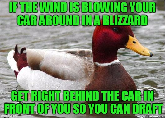 makes sense to NASCAR southerners. | IF THE WIND IS BLOWING YOUR CAR AROUND IN A BLIZZARD GET RIGHT BEHIND THE CAR IN FRONT OF YOU SO YOU CAN DRAFT | image tagged in make actual bad advice mallard | made w/ Imgflip meme maker