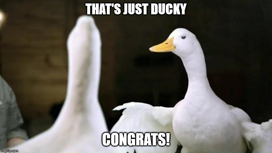 THAT'S JUST DUCKY CONGRATS! | made w/ Imgflip meme maker