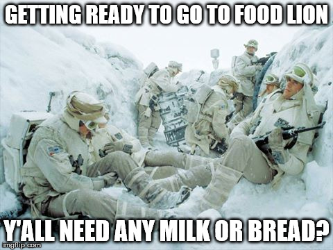 snow day grocery run NC | GETTING READY TO GO TO FOOD LION Y'ALL NEED ANY MILK OR BREAD? | image tagged in snow | made w/ Imgflip meme maker