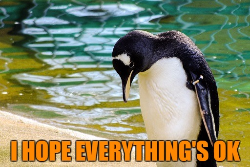 I Hope Everything Is OK | I HOPE EVERYTHING'S OK | image tagged in memes | made w/ Imgflip meme maker