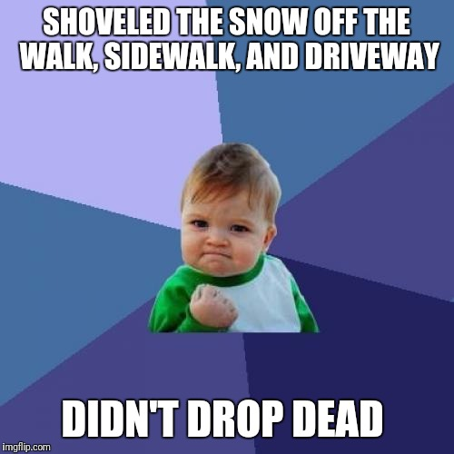 I guess that blood pressure medicine is doing it's job... | SHOVELED THE SNOW OFF THE WALK, SIDEWALK, AND DRIVEWAY DIDN'T DROP DEAD | image tagged in memes,success kid | made w/ Imgflip meme maker
