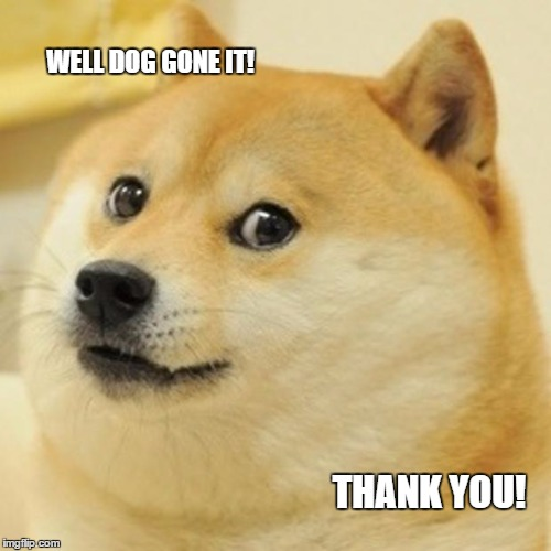 Doge Meme | WELL DOG GONE IT! THANK YOU! | image tagged in memes,doge | made w/ Imgflip meme maker