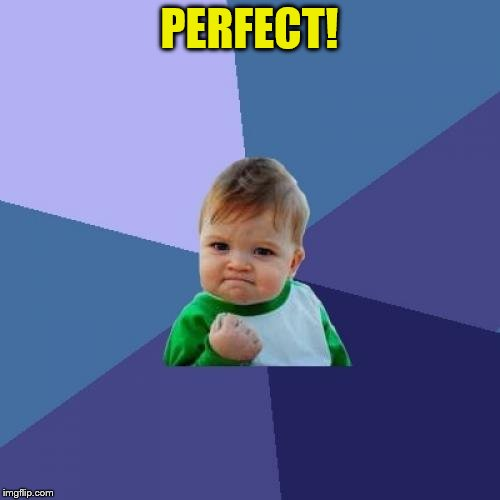 Success Kid Meme | PERFECT! | image tagged in memes,success kid | made w/ Imgflip meme maker