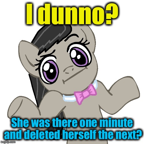 I dunno? She was there one minute and deleted herself the next? | made w/ Imgflip meme maker
