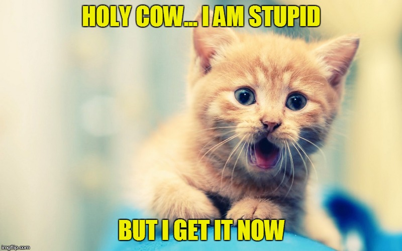 HOLY COW... I AM STUPID BUT I GET IT NOW | made w/ Imgflip meme maker