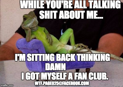 Sassy Iguana | WHILE YOU'RE ALL TALKING SHIT ABOUT ME... I'M SITTING BACK THINKING DAMN             I GOT MYSELF A FAN CLUB. WTF.PAGE925@FACEBOOK.COM | image tagged in memes,sassy iguana,haters,haters gonna hate,rumors,funny memes | made w/ Imgflip meme maker