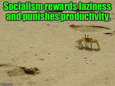 Socialism rewards laziness and punishes productivity. | image tagged in little acknowledged fact crab | made w/ Imgflip meme maker