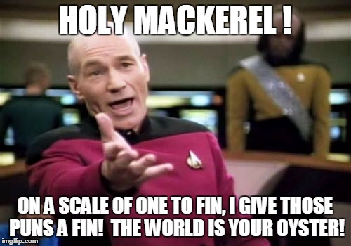 Picard Wtf Meme | HOLY MACKEREL ! ON A SCALE OF ONE TO FIN, I GIVE THOSE PUNS A FIN!  THE WORLD IS YOUR OYSTER! | image tagged in memes,picard wtf | made w/ Imgflip meme maker