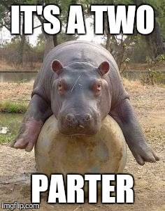 Happy hippo | IT'S A TWO PARTER | image tagged in happy hippo | made w/ Imgflip meme maker