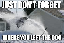 Flying dog | JUST DON'T FORGET WHERE YOU LEFT THE DOG | image tagged in flying dog | made w/ Imgflip meme maker