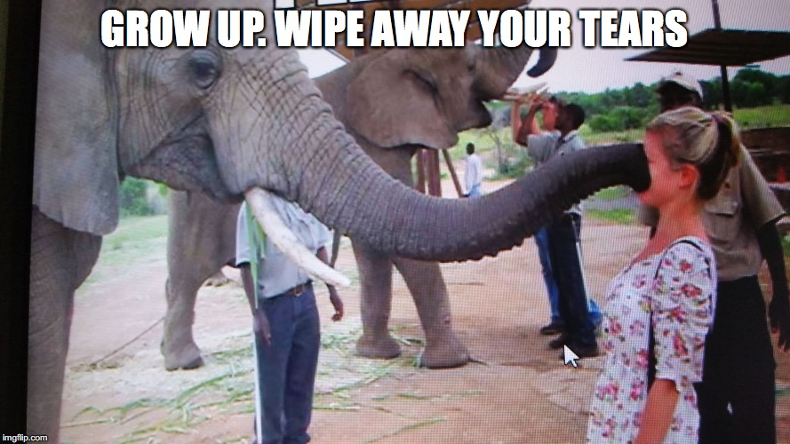 GROW UP. WIPE AWAY YOUR TEARS | made w/ Imgflip meme maker