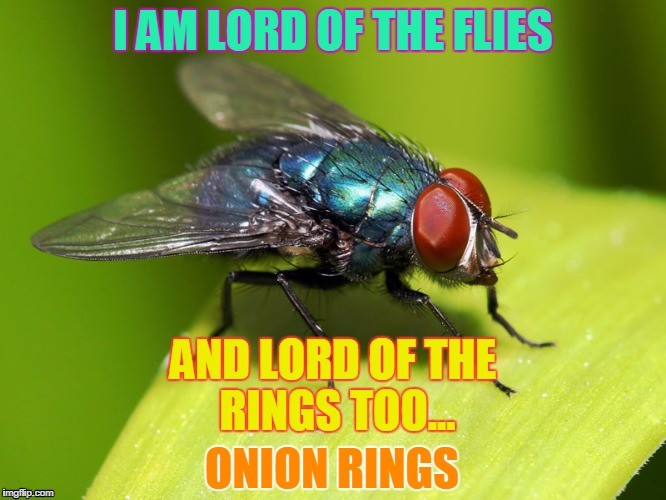 When interviewed on WHY he kept buzzing, and finally landed on H | I AM LORD OF THE FLIES ONION RINGS AND LORD OF THE RINGS TOO... | image tagged in when interviewed on why he kept buzzing,and finally landed on h | made w/ Imgflip meme maker