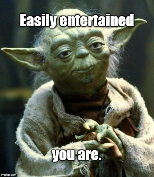 Star Wars Yoda Meme | Easily entertained you are. | image tagged in memes,star wars yoda | made w/ Imgflip meme maker