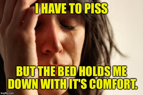 The true medieval torture. | I HAVE TO PISS BUT THE BED HOLDS ME DOWN WITH IT'S COMFORT. | image tagged in memes,first world problems,piss,more piss,dank | made w/ Imgflip meme maker