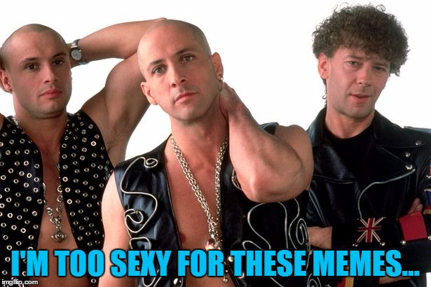 He's a memer you know what I mean? |  I'M TOO SEXY FOR THESE MEMES... | image tagged in memes,right said fred,music,90s music | made w/ Imgflip meme maker