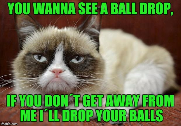 Happy new year imgflip! I know it´s not actually new year´s day, BUT WHAT THE HECK!!! | YOU WANNA SEE A BALL DROP, IF YOU DON´T GET AWAY FROM ME I´LL DROP YOUR BALLS | image tagged in grumpy cat new year | made w/ Imgflip meme maker